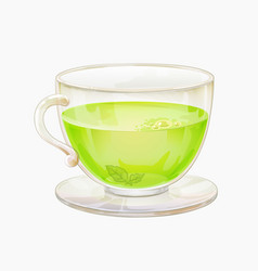 green or herbal tea in glass cup on saucer vector image