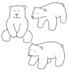 set of polar bear vector image