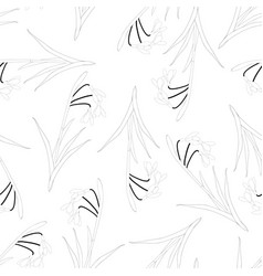 snowdrop outline seamless on white background vector image