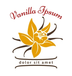 Vanilla dessert flavor logo Vanillas aromatic vector