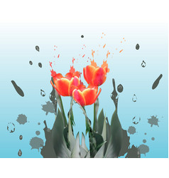 realistic tulips spring flower card vector image