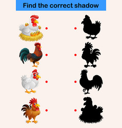 find the correct shadow farm animals chicken vector image