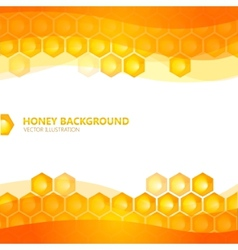 Honeycomb with honey vector image