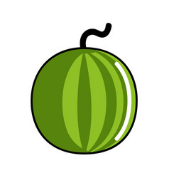 isolated watermelon icon vector image
