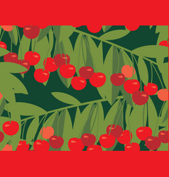 rape cherry fruit seamless pattern vector image