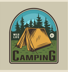 vintage colorful camping time emblem vector image