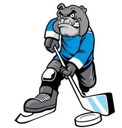 bulldog playing ice hockey vector image