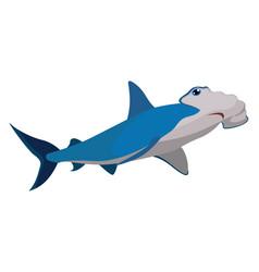 Hammer shark on white background vector
