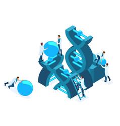 isometric genetic engineering dna structure vector image