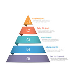 Pyramid infographics vector