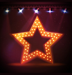 Silhouette of disco star retro sign vector