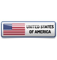 USA flag button vector image