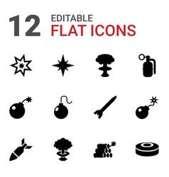 12 bomb icons vector
