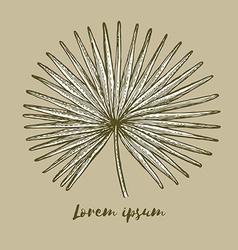 Engraved palm leaf vector