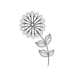 flower spring season line vector image