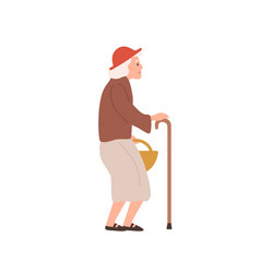 old lady flat elderly woman vector image