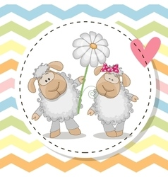 Greeting card with two sheep vector