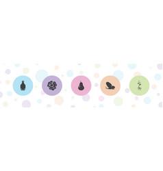 5 natural icons vector
