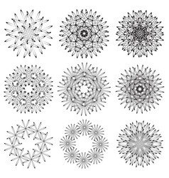abstrac floral repeating sample figure and line vector image