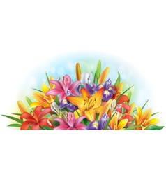 Arrangement lilies and irises vector