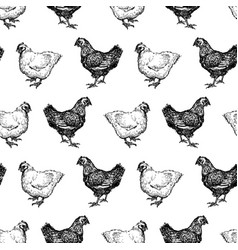 seamless background hens sketches vector image