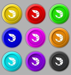 Shrimp seafood icon sign symbol on nine round vector image