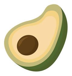 avocado fruit on white background vector image