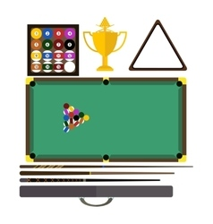 Billiards game equipment vector image
