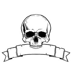 Black and white human skull with ribbon banner vector image