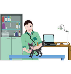 colorful veterinary care background vector image