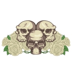Human skulls and rose vector