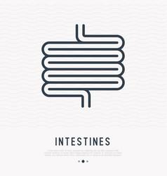 Intestines thin line icon vector