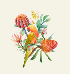 watercolor tropical parrots composition vector image