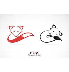 image of an fox design vector image vector image