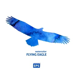 Watercolor flying blue eagle vector image
