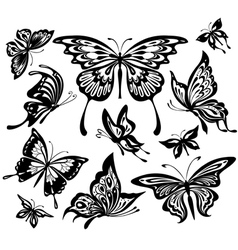 set of black and white butterflies vector image vector image