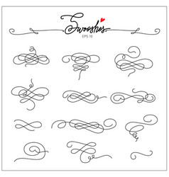 Beautiful artistic set of ink swooshes hand drawn vector
