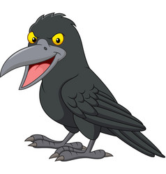 Cartoon crow isolated on white background vector