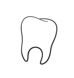 doodle human tooth vector image