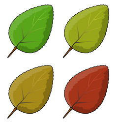 leaf set symbol icon design vector image