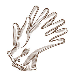 leather vintage gloves hand female accessory vector image