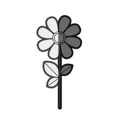 Monochrome silhouette daysi flower with leaves and vector