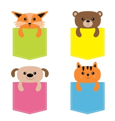 Animals in the pocket Cute cartoon colorful dog vector image
