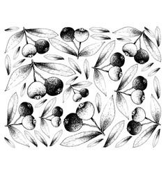 Hand drawn background of fresh brush cherries vector