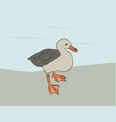 small duck is on nature vector image