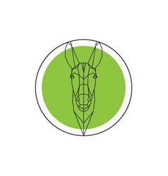 donkey head on green round logo vector image vector image
