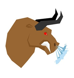 Angry bull Head of an aggressive beast with big vector image