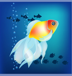relistic golden fish on the dark blue vector image vector image