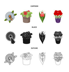 Design spring and wreath icon set of vector