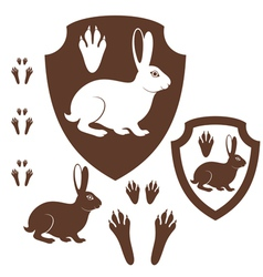 Hare Paw Print vector